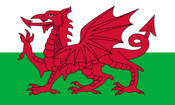 Wales Wales flag with official colors and the aspect ratio of 3:5. Flat vector illustration. wales stock illustrations