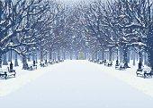 Walk in the winter park