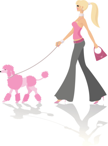 Walking a pink poodle