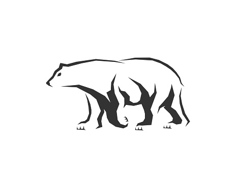 Walking bear with silhouette vector illustration