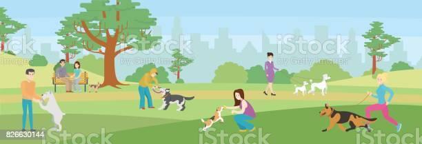 Walking dogs in park vector id826630144?b=1&k=6&m=826630144&s=612x612&h=9zw0ezhmzue6xit6on rxbsmiwvlhlw vvm2bddm va=