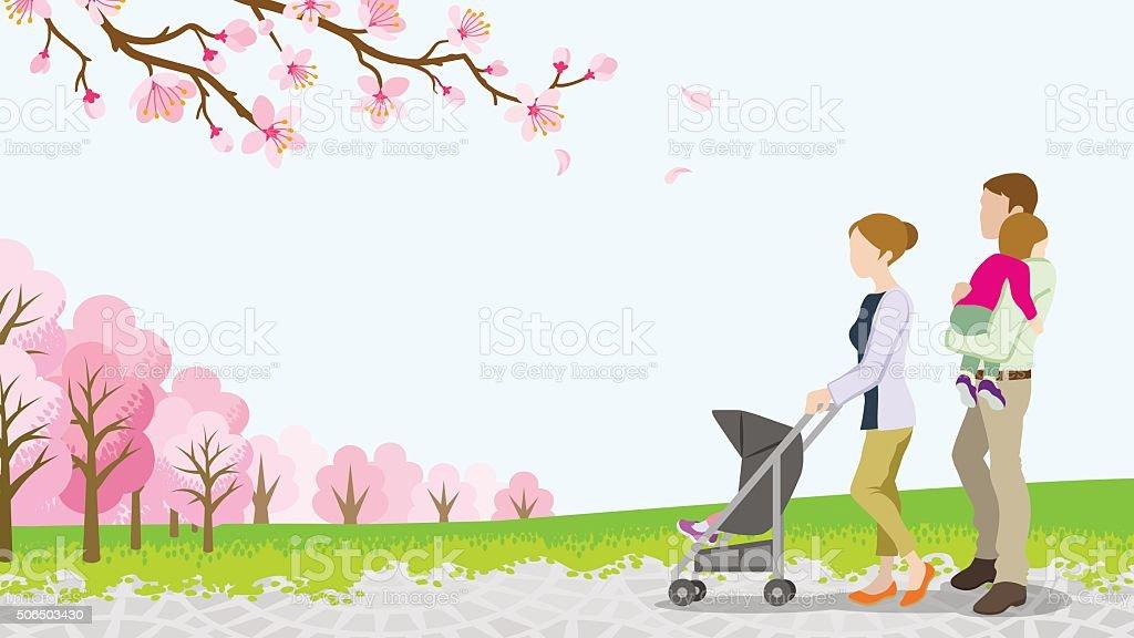 Walking family with Baby Stroller ,full bloom cherry trees -EPS10 vector art illustration