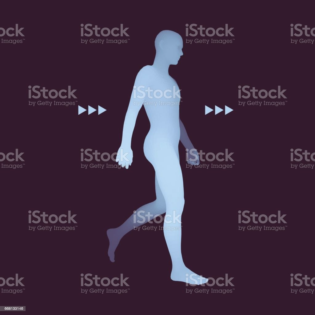 Walking Man. 3D Human Body Model. Vector Illustration. vector art illustration