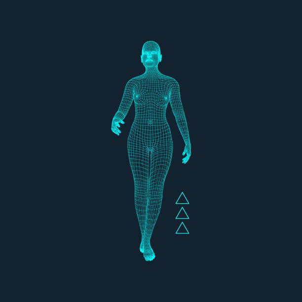 walking man. 3d human body model. vector illustration. - wire frame model stock illustrations