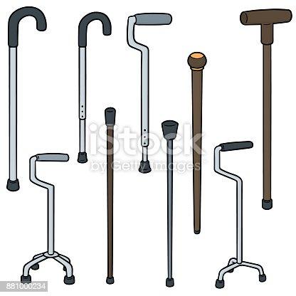 istock walking stick 881000234