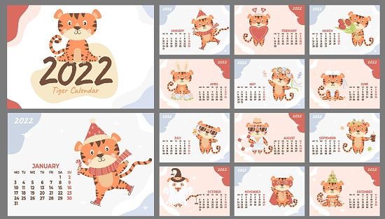Wall calendar template for 2022. Year of the Tiger in the Chinese or Eastern calendar. set of 12 pages and a cover with a cute striped tiger. Vector illustration. Week from Monday