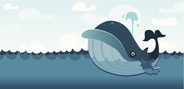 Wally the Whale vector art illustration