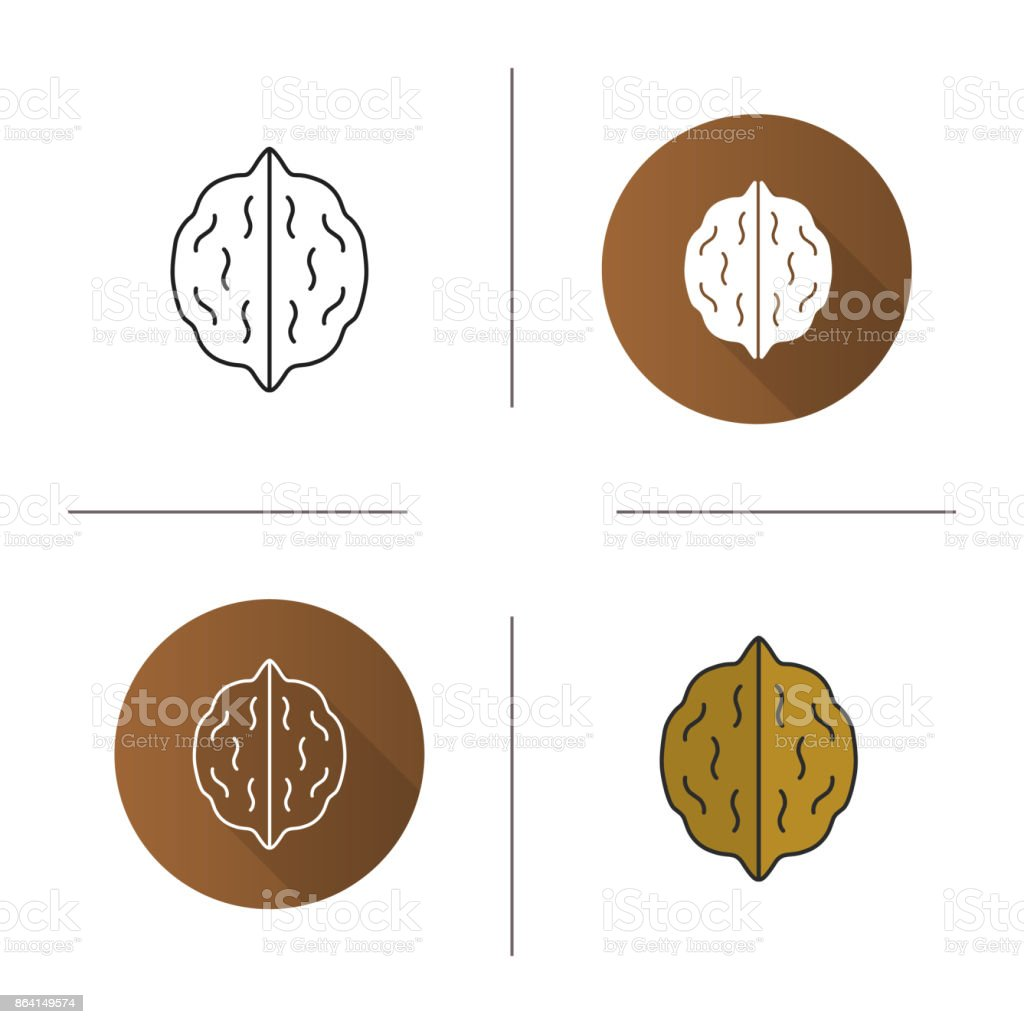 Walnut icon royalty-free walnut icon stock vector art & more images of botany