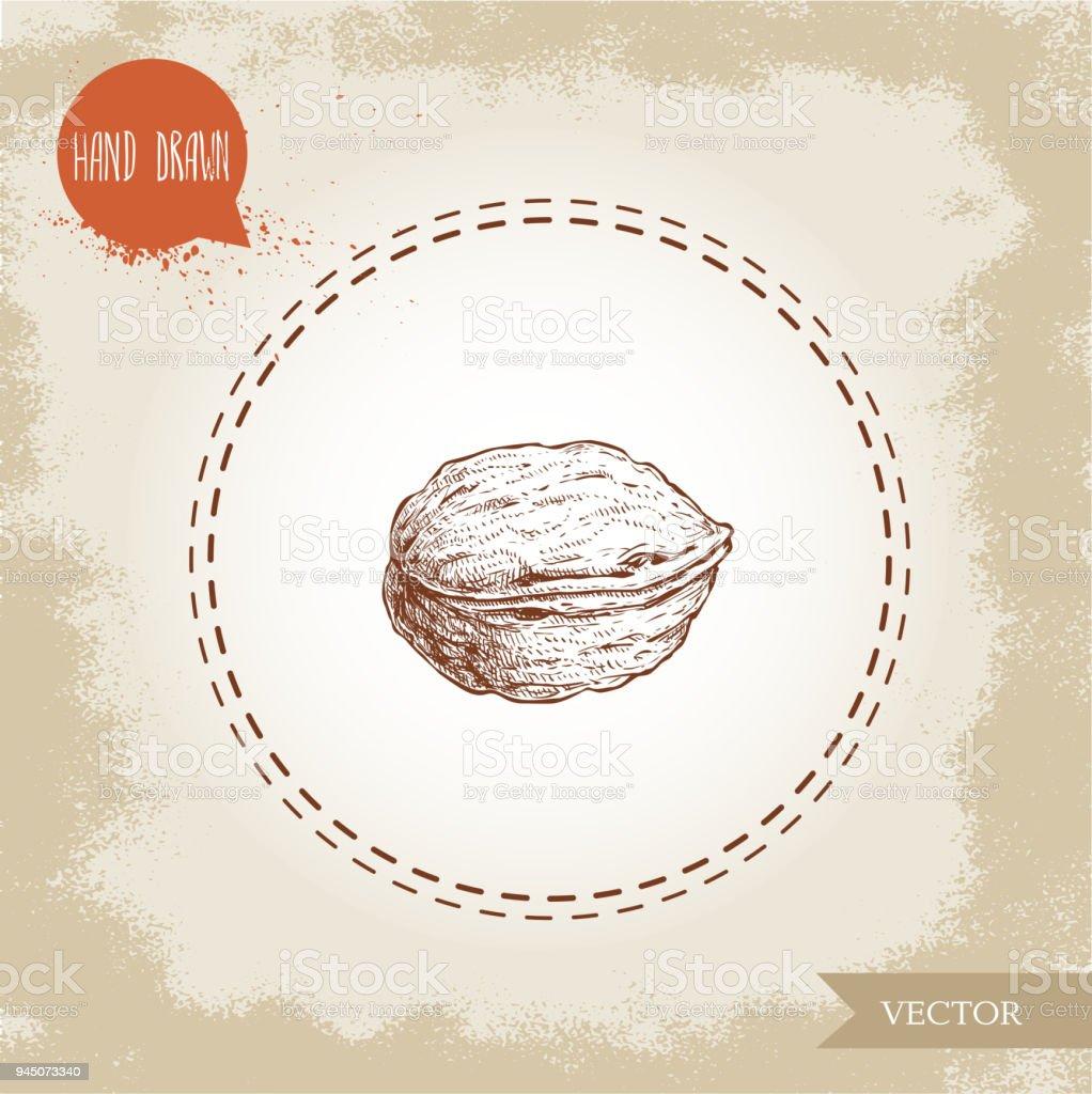 Walnut sketch hand drawn eco and super food on vintage background eco and super food on vintage background vector illustration urtaz Images