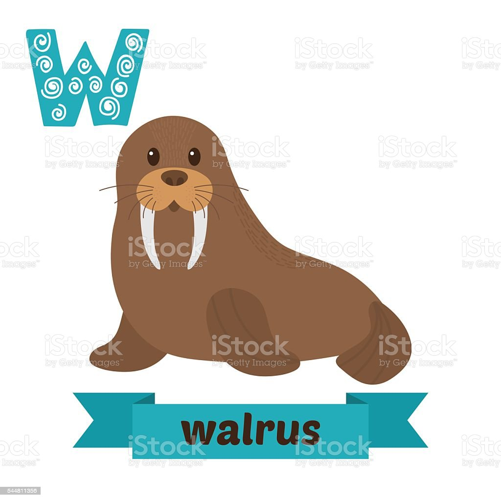 Walrus W Letter Cute Children Animal Alphabet In Vector Funny Stock ...