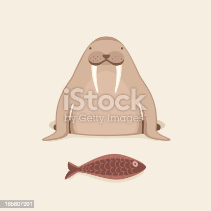 Vector illustration of a Walrus who caught the fish.