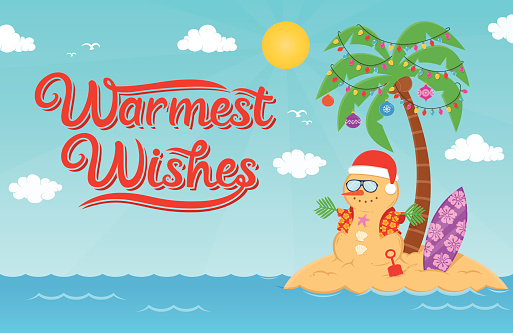 Warmest wishes for Christmas and New Year Holidays