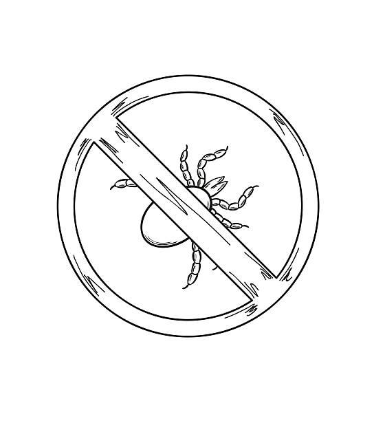 warnschild das häkchen, skizze - wunderbaum stock-grafiken, -clipart, -cartoons und -symbole