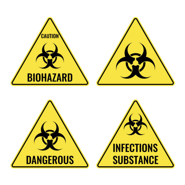 Warning yellow signs in triangular shape vector caution emblems Warning yellow signs in triangular shape vector caution emblems with symbols of biohazard and infections substances. Caution and dangerous places biohazard symbol stock illustrations