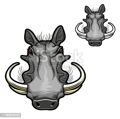 Warthog boar animal vector icon with head of wild pig or African razorback hog with curved tusks, angry muzzle and gray snout. Safari mammal design of zoo mascot or hunting sport club symbol
