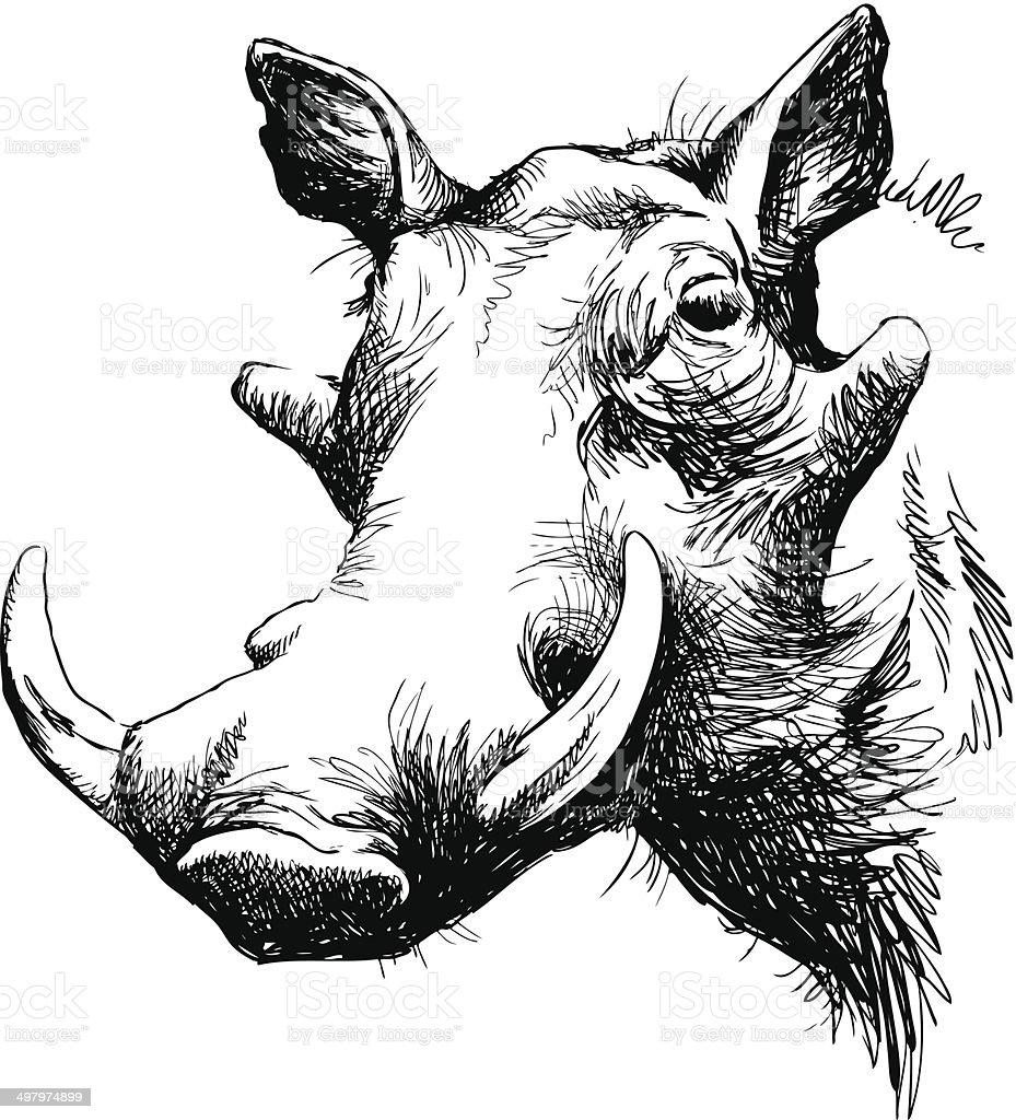 Warthog portrait vector art illustration