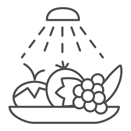 Wash food hygiene thin line icon. Disinfection fruits and vegetables outline style pictogram on white background. Coronavirus prevention signs for mobile concept and web design. Vector graphics.