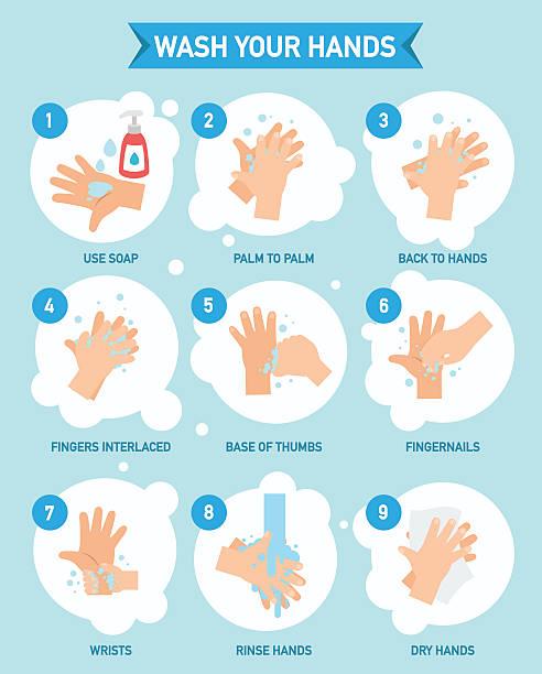 手を洗う適切なインフォグラフィック、ベクター - 衛生点のイラスト素材/クリップアート素材/マンガ素材/アイコン素材