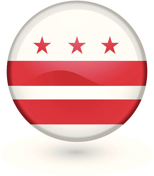 Washington DC flag button vector art illustration