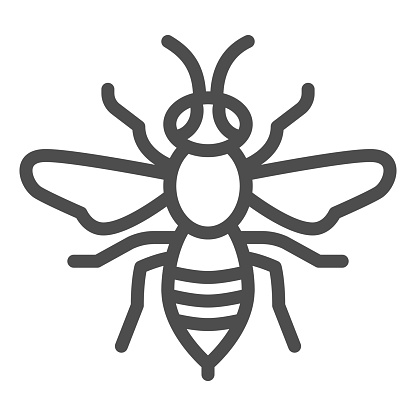 Wasp line icon, Insects concept, bee sign on white background, Wasp insect icon in outline style for mobile concept and web design. Vector graphics.