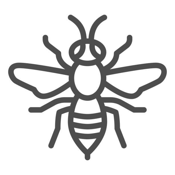 stockillustraties, clipart, cartoons en iconen met het pictogram van de wespenlijn, het concept van insecten, bijenteken op witte achtergrond, het insectpictogram van de wespen in overzichtsstijl voor mobiel concept en webontwerp. vectorafbeeldingen. - stekels
