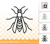 Wasp simple black line insect bug vector icon
