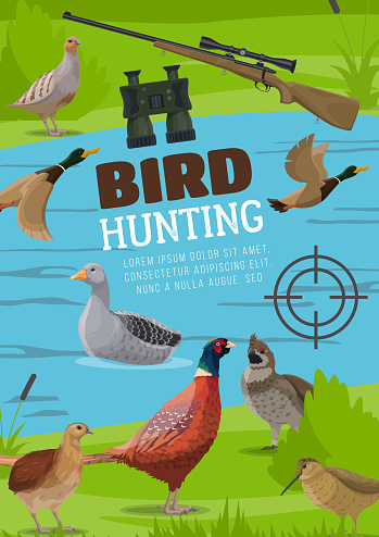 Water and upland birds hunting vector poster