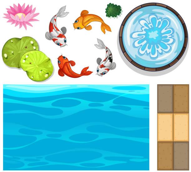 wasser-hintergrund mit fisch und lotus - seerosenteich stock-grafiken, -clipart, -cartoons und -symbole