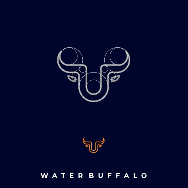 Water Buffalo Illustration Vector Template Water Buffalo Illustration Vector Template. Suitable for Creative Industry, Multimedia, entertainment, Educations, Shop, and any related business. domestic animals stock illustrations