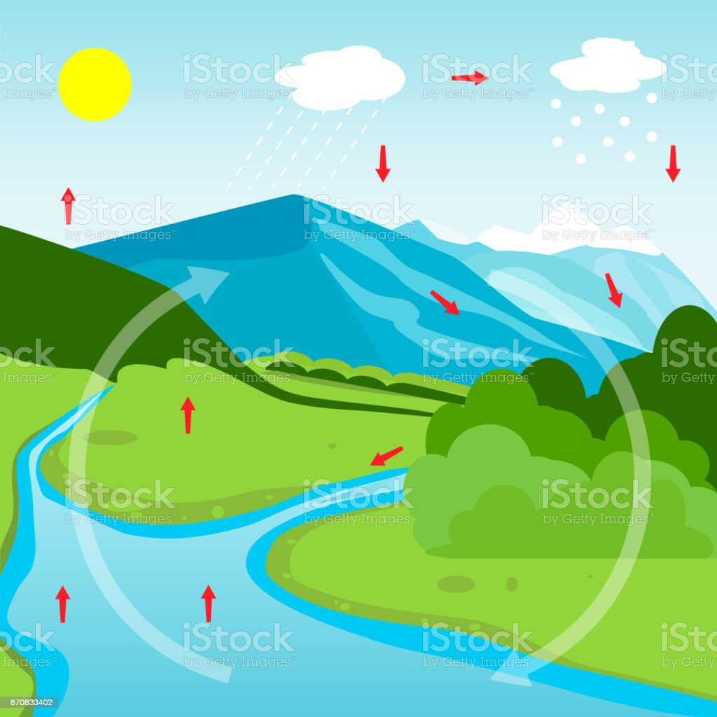 Water cycle diagram stock vector art more images of biology water cycle diagram royalty free water cycle diagram stock vector art amp more images ccuart Image collections
