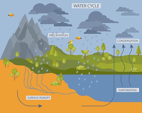 Water cycle. Geography, ecology infographic design