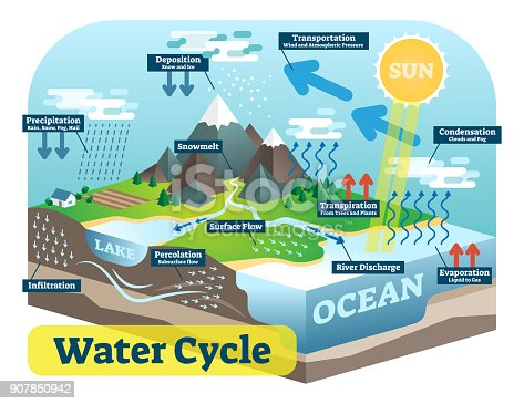176 Water Cycle Illustrations Clip Art Istock