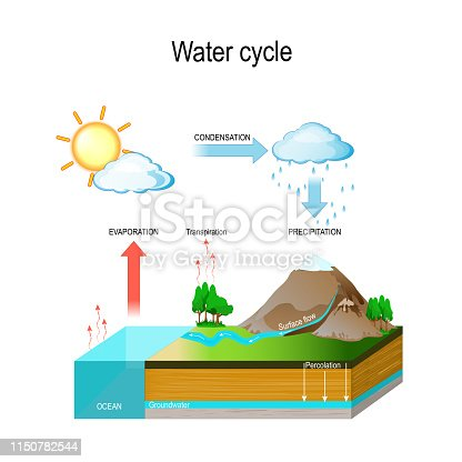 Water cycle in nature environment. The sun, which drives the water cycle, heats water in oceans and seas. Water evaporates as water vapor into the air. isometric diagram. vector illustration with and geological relief