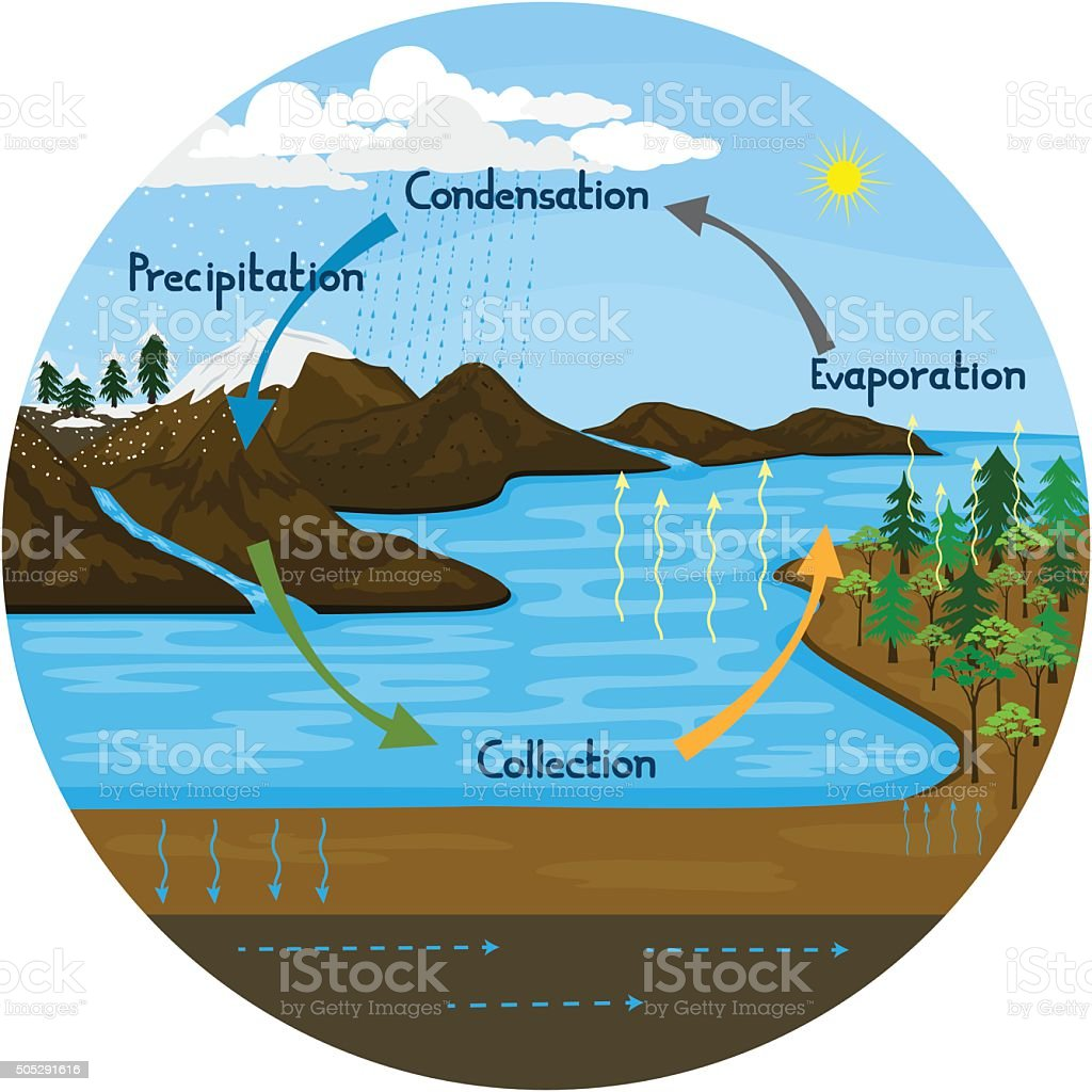 Water Cycle In Nature Stock Vector Art & More Images of ...