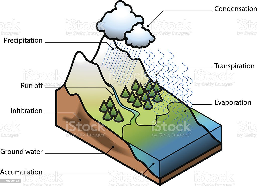 Water Cycle royalty-free water cycle stock vector art & more images of condensation