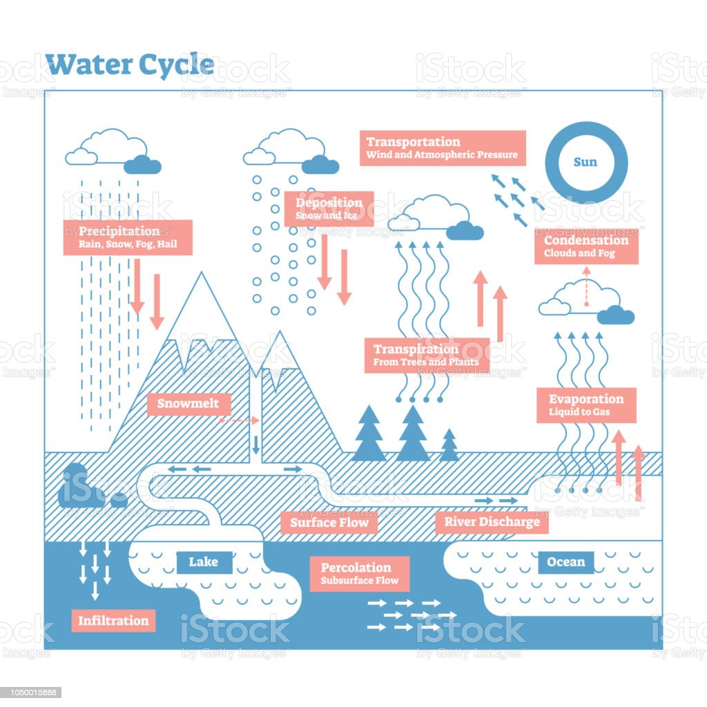 Water Cycle Vector Illustration Diagram Geo Science