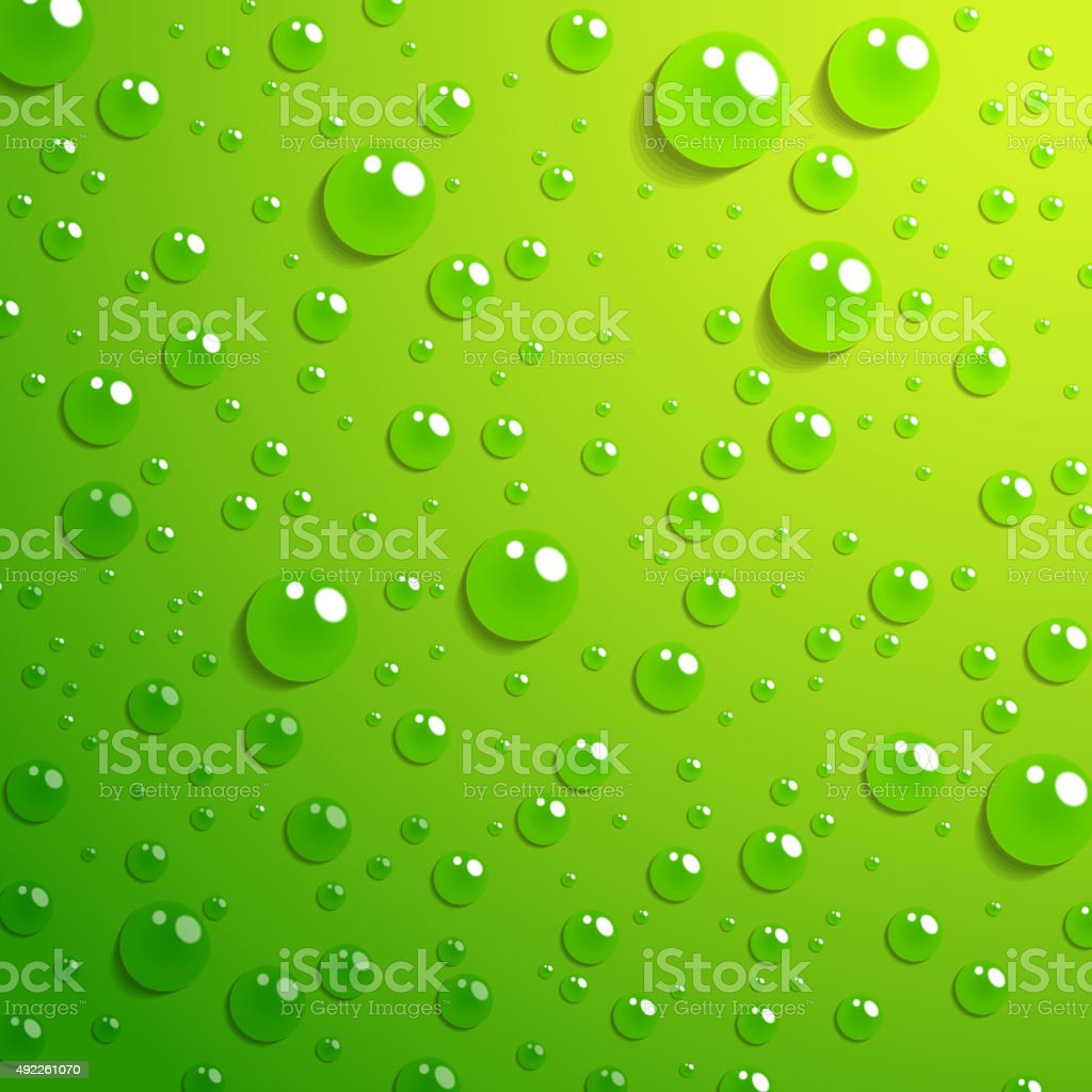 Water drop on green background vector art illustration