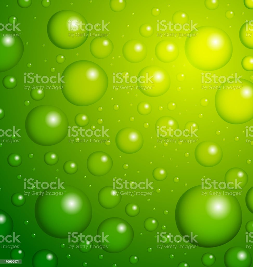 Water Drops on Leaf royalty-free stock vector art