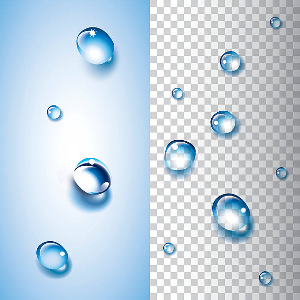 Water drops (transparent) vector art illustration