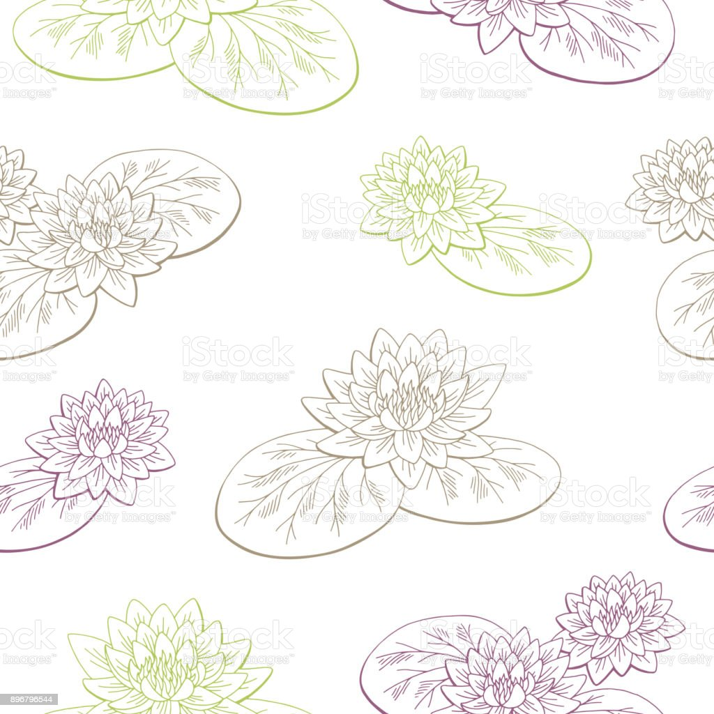 睡蓮花画像から色のシームレスなパターンをスケッチ イラスト いたずら