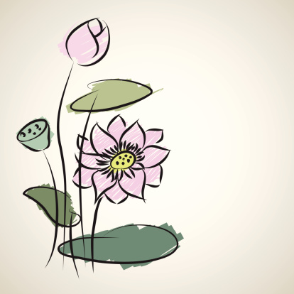 Water Lily Pattern Of Illustrator Sketching Stock Illustration - Download Image Now
