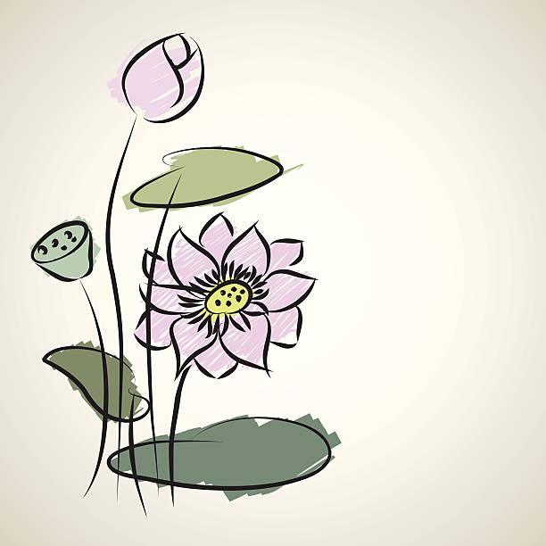 water lily pattern of illustrator sketching vector art illustration