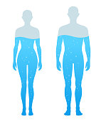 istock Water Percentage in human body illustration, Chart 1191677846