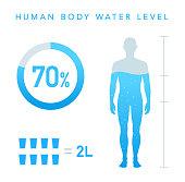 Water Percentage of human body illustration, Chart, man