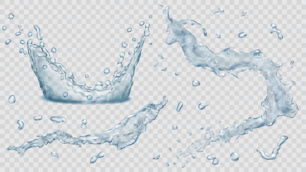 ilustrações de stock, clip art, desenhos animados e ícones de water splashes, water drops and crown from splash of water - water splash