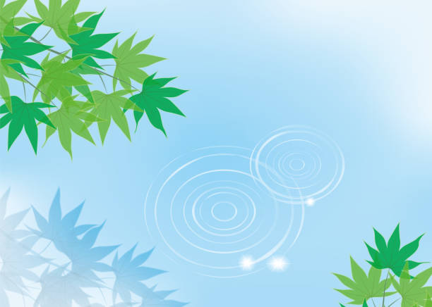Water surface and blue maple vector art illustration