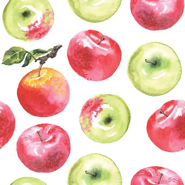 Watercolor Apple Clipart