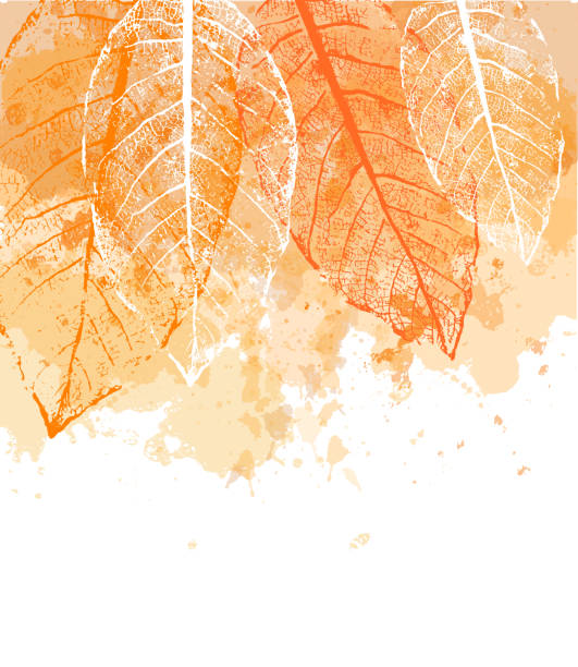 Watercolor autumn abstract background with leaves Watercolor autumn abstract background with leaves. Template for your design, flyer, card, banner and poster. Vector illustration fall background stock illustrations