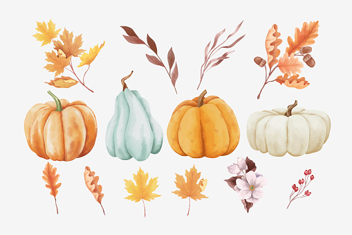 Set of autumn leaves and pumpkins in watercolor style