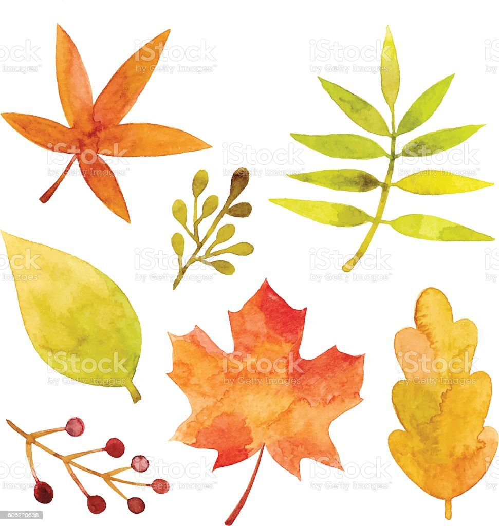 Watercolor Autumn Leaves vector art illustration